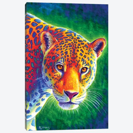 Light in the Rainforest - Jaguar Canvas Print #RBW18} by Rebecca Wang Canvas Art