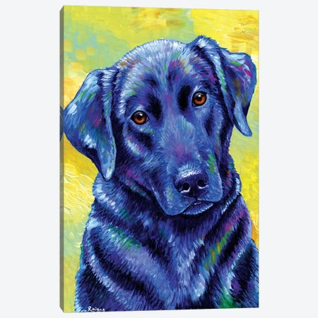 Loyal Companion - Labrador Retriever Canvas Print #RBW19} by Rebecca Wang Canvas Art