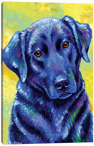 Loyal Companion - Labrador Retriever Canvas Art Print