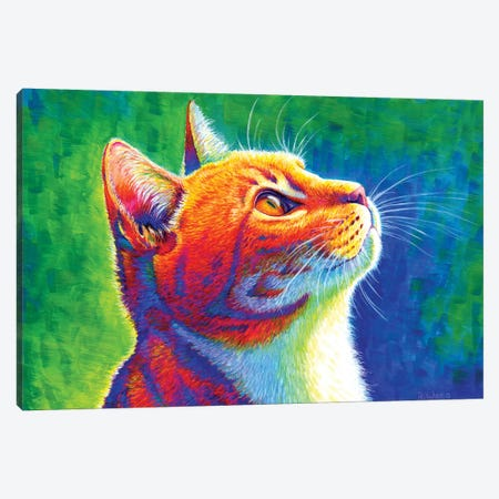 Anticipation - Rainbow Tabby Cat Canvas Print #RBW1} by Rebecca Wang Canvas Art Print