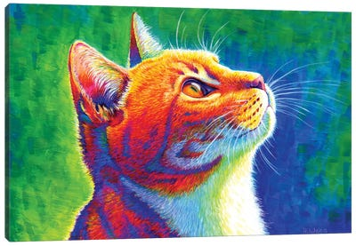 Anticipation - Rainbow Tabby Cat by Rebecca Wang Canvas Art Print