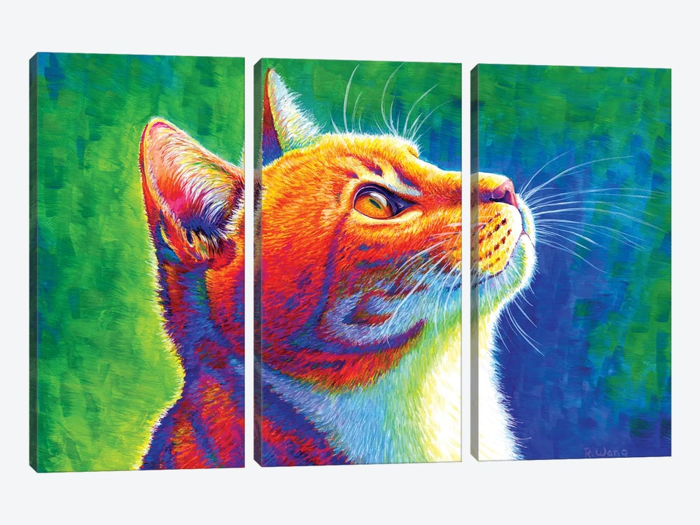 Anticipation - Rainbow Tabby Cat by Rebecca Wang 3-piece Canvas Wall Art