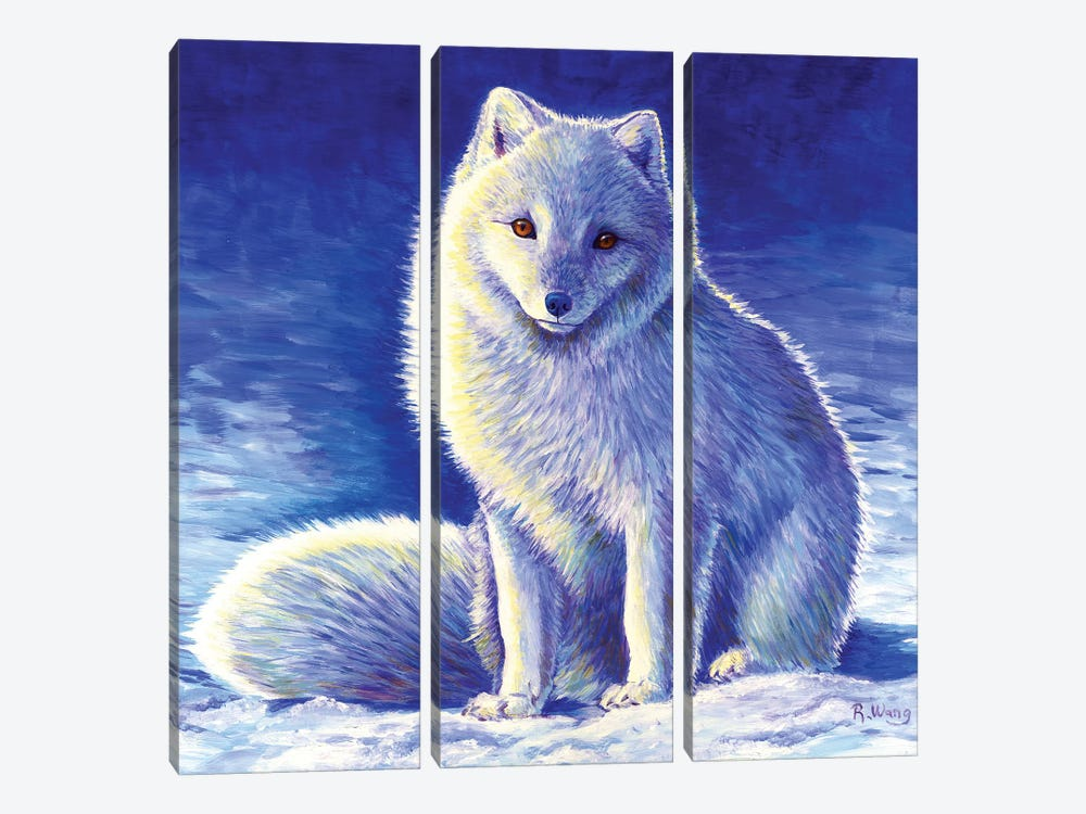 Peaceful Winter - Arctic Fox by Rebecca Wang 3-piece Canvas Print
