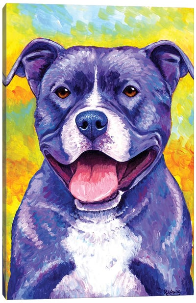 Peppy Pitbull Dog by Rebecca Wang Canvas Art Print
