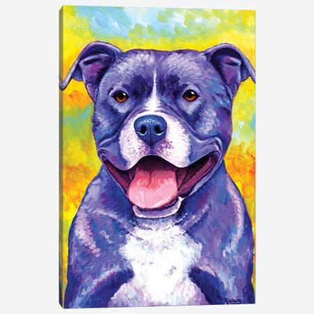 Peppy Pitbull Dog Canvas Print #RBW23} by Rebecca Wang Art Print