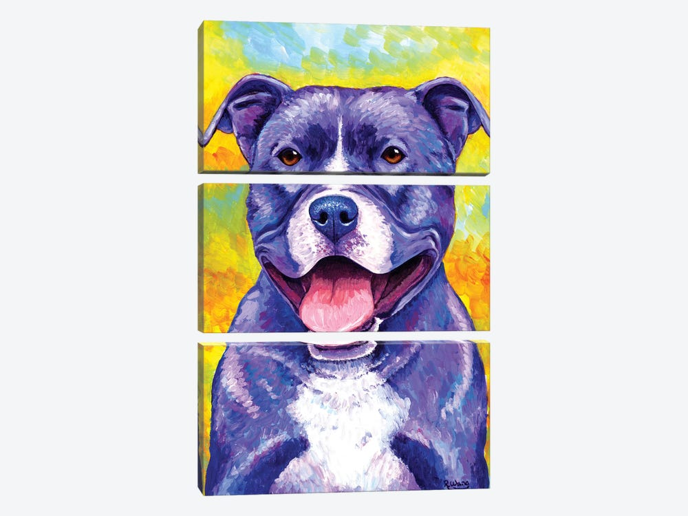 Peppy Pitbull Dog by Rebecca Wang 3-piece Canvas Wall Art