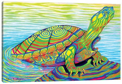 Psychedelic Neon Painted Turtle by Rebecca Wang Canvas Art Print