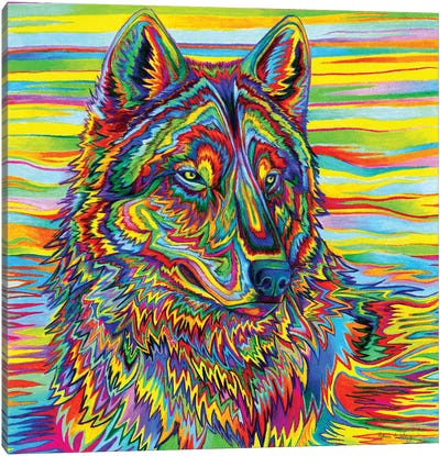 Psychedelic Wolf by Rebecca Wang Canvas Art Print