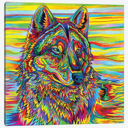 Psychedelic Wolf 3-Piece Canvas #RBW29} by Rebecca Wang Canvas Art Print