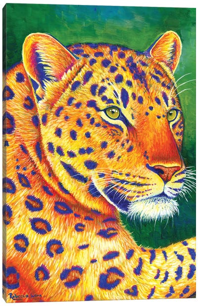 Queen of the Jungle - Leopard by Rebecca Wang Canvas Art Print