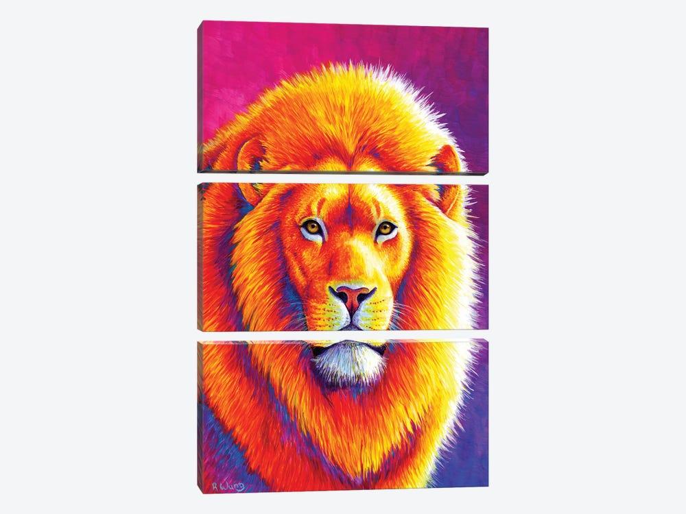 Sunset on the Savanna African Lion by Rebecca Wang 3-piece Canvas Art Print