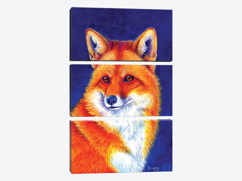 Vibrant Flame - Red Fox by Rebecca Wang 3-piece Canvas Print