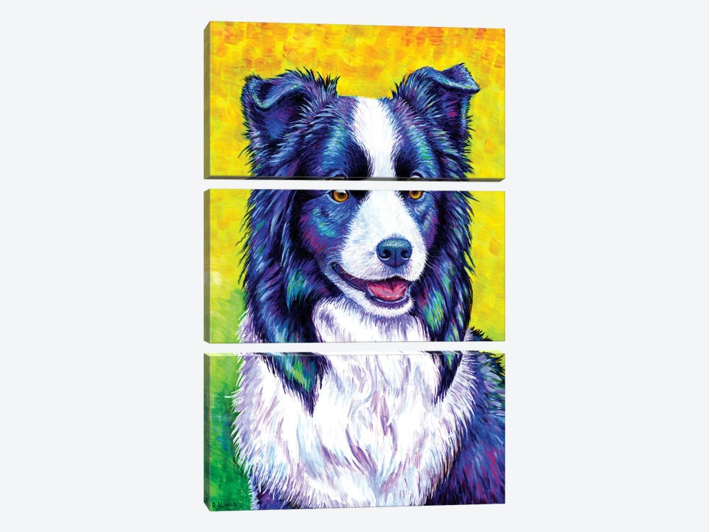 Watchful Eye - Border Collie by Rebecca Wang 3-piece Canvas Wall Art