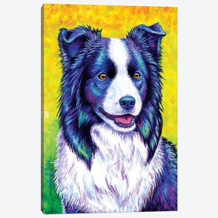 Watchful Eye - Border Collie Canvas Print #RBW38} by Rebecca Wang Canvas Wall Art