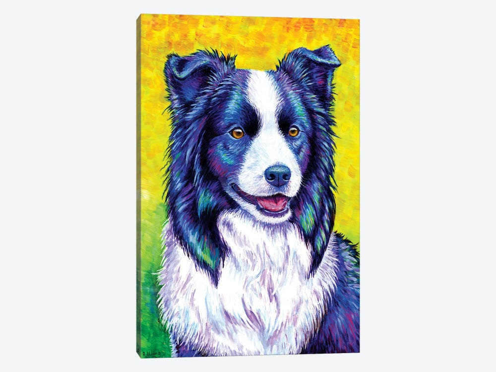 Watchful Eye - Border Collie by Rebecca Wang 1-piece Canvas Artwork