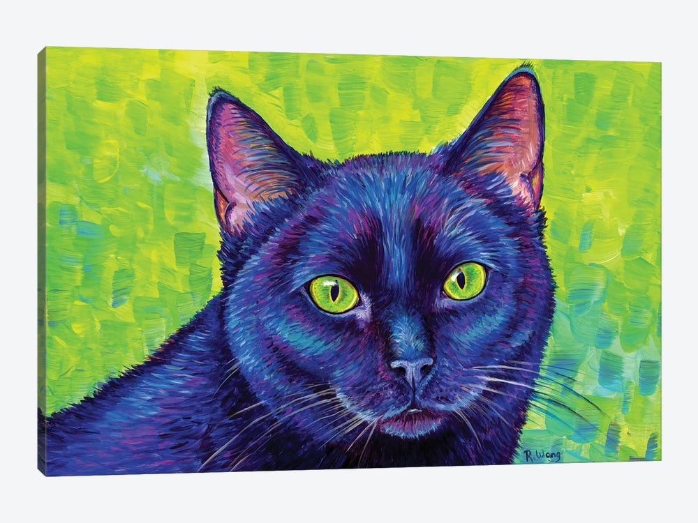 Black Cat With Chartreuse Eyes by Rebecca Wang 1-piece Canvas Print