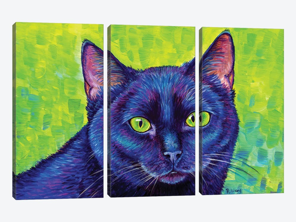 Black Cat With Chartreuse Eyes by Rebecca Wang 3-piece Art Print