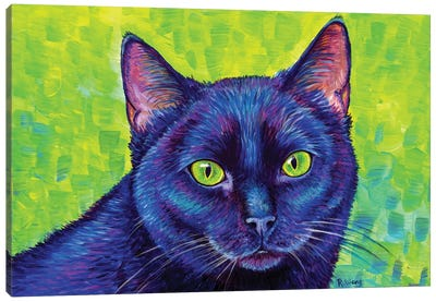 Black Cat With Chartreuse Eyes by Rebecca Wang Canvas Art Print