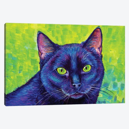 Black Cat With Chartreuse Eyes Canvas Print #RBW44} by Rebecca Wang Canvas Artwork