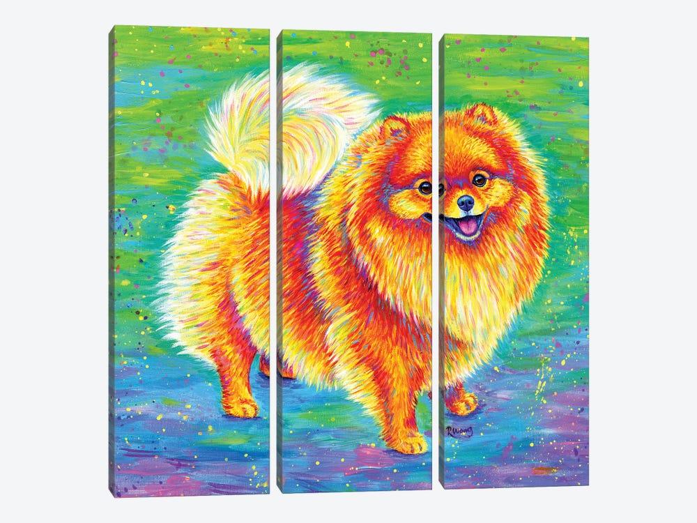 Rainbow Pomeranian by Rebecca Wang 3-piece Canvas Artwork