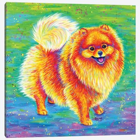Rainbow Pomeranian Canvas Print #RBW49} by Rebecca Wang Art Print
