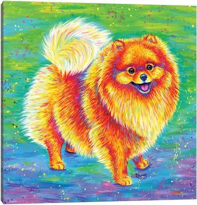 Rainbow Pomeranian Canvas Art Print