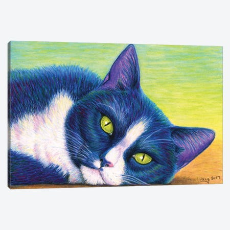 Colorful Tuxedo Cat Canvas Print #RBW50} by Rebecca Wang Canvas Art