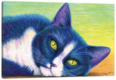Colorful Tuxedo Cat Canvas Art Print