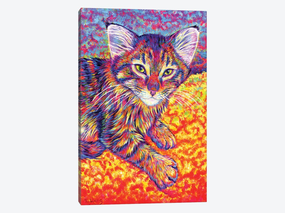 Colorful Brown Tabby Kitten by Rebecca Wang 1-piece Canvas Art Print