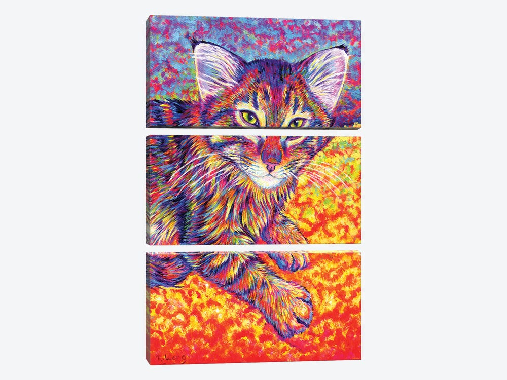 Colorful Brown Tabby Kitten by Rebecca Wang 3-piece Canvas Print