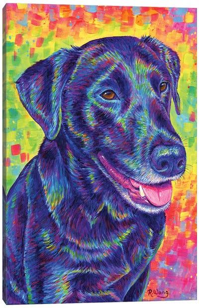 Happy Go Lucky Canvas Art Print
