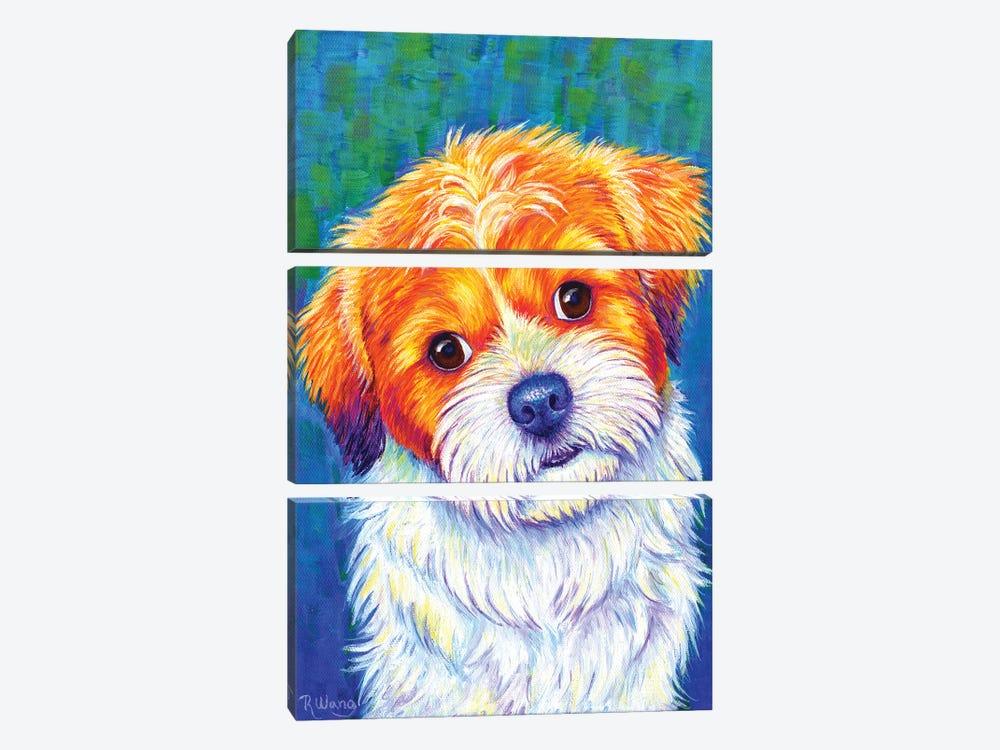 Curious Shih Tzu by Rebecca Wang 3-piece Canvas Wall Art