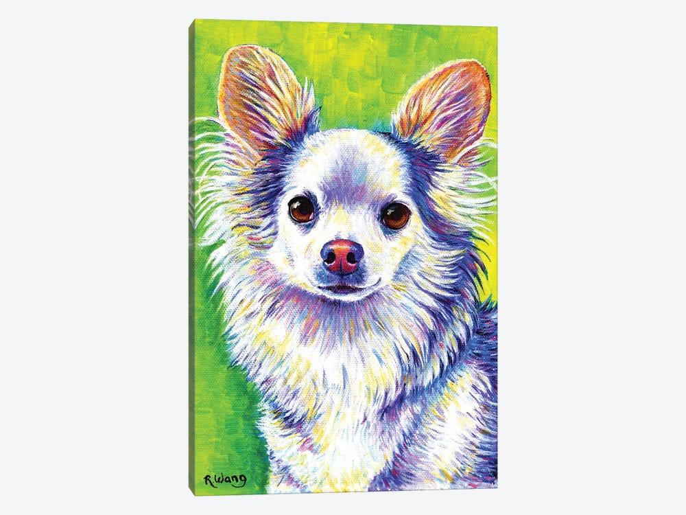 Cute Chihuahua by Rebecca Wang 1-piece Canvas Art Print