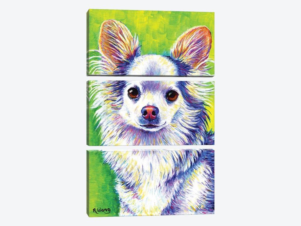 Cute Chihuahua by Rebecca Wang 3-piece Canvas Art Print