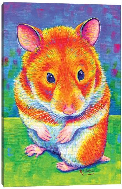 Rainbow Hamster Canvas Art Print