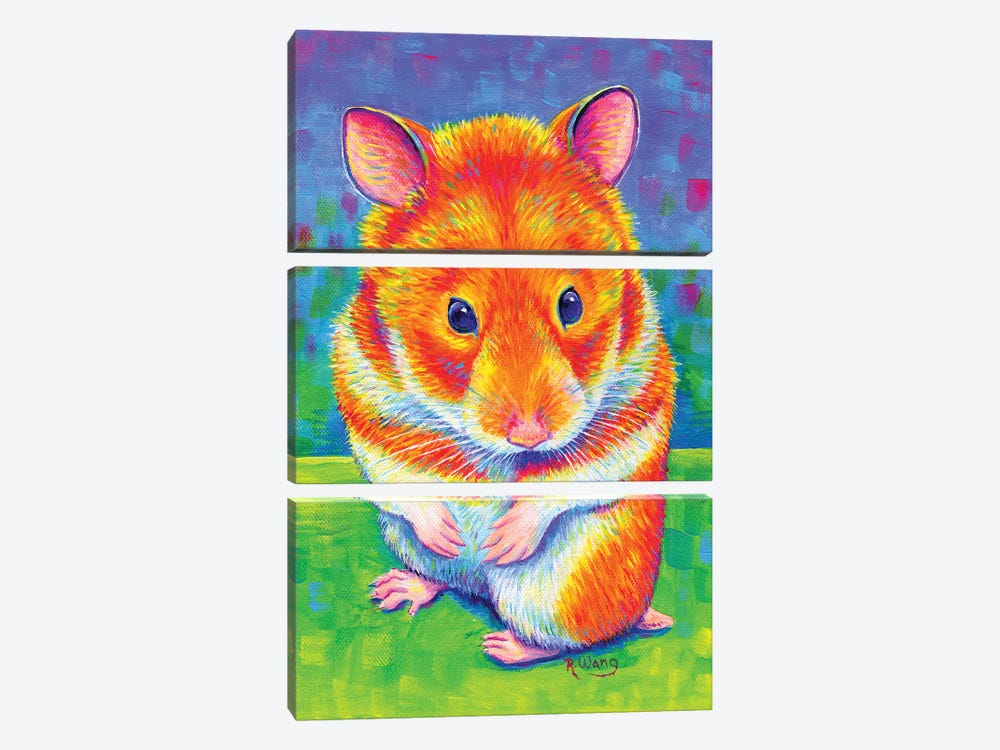 Rainbow Hamster by Rebecca Wang 3-piece Canvas Artwork