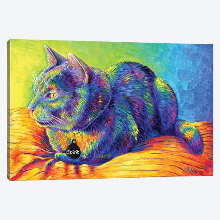 Psychedelic Spirit Canvas Print #RBW63} by Rebecca Wang Canvas Print