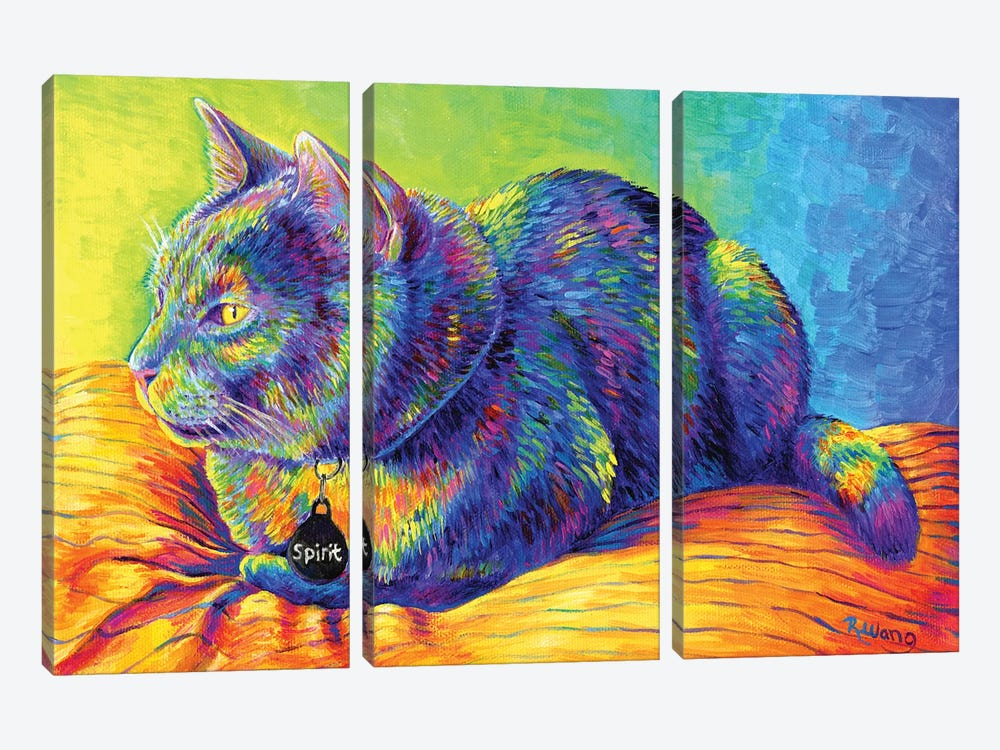 Psychedelic Spirit by Rebecca Wang 3-piece Canvas Wall Art