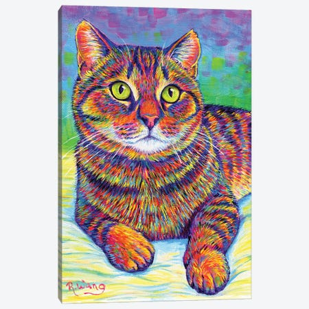 Rainbow Brown Tabby Canvas Print #RBW64} by Rebecca Wang Canvas Art