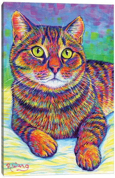 Rainbow Brown Tabby Canvas Art Print