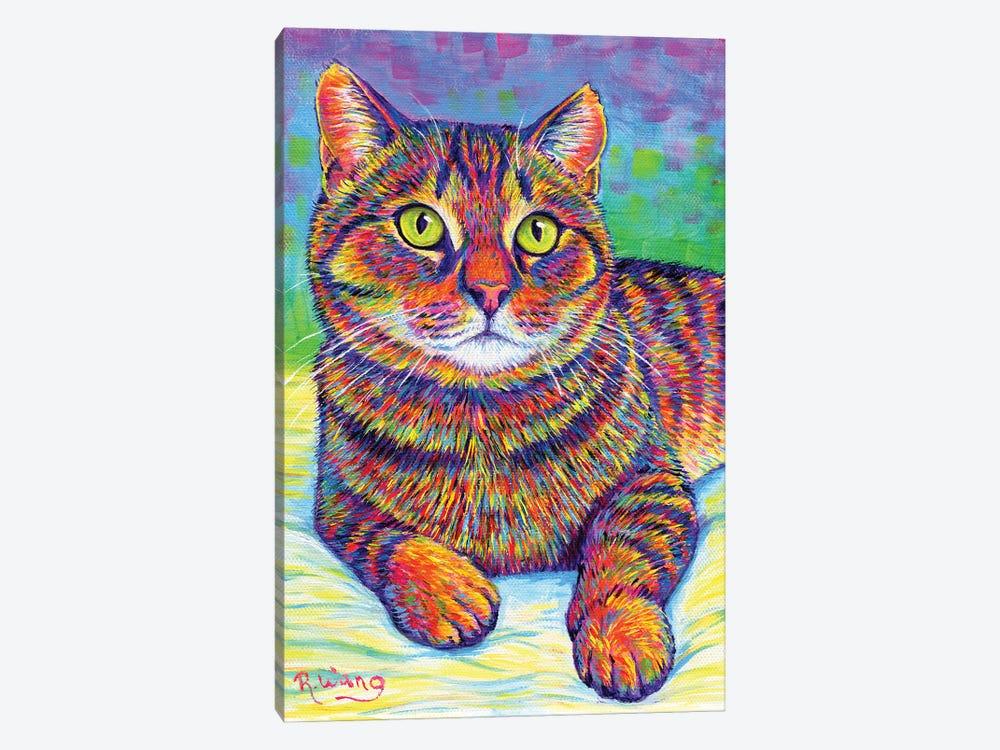Rainbow Brown Tabby by Rebecca Wang 1-piece Canvas Print