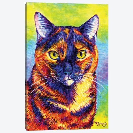 Colorful Tortoiseshell Cat Canvas Print #RBW67} by Rebecca Wang Canvas Wall Art