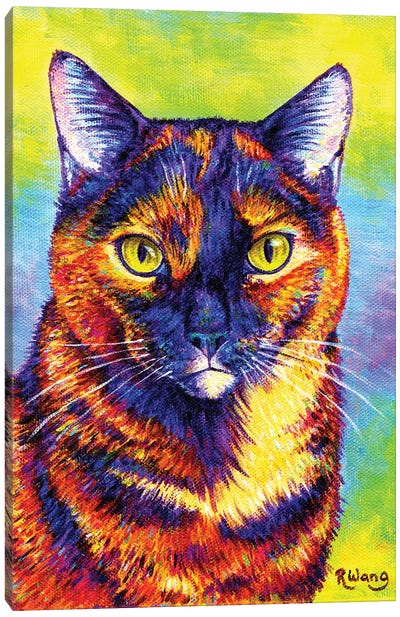 Technicolor Tortoiseshell Canvas Art Print
