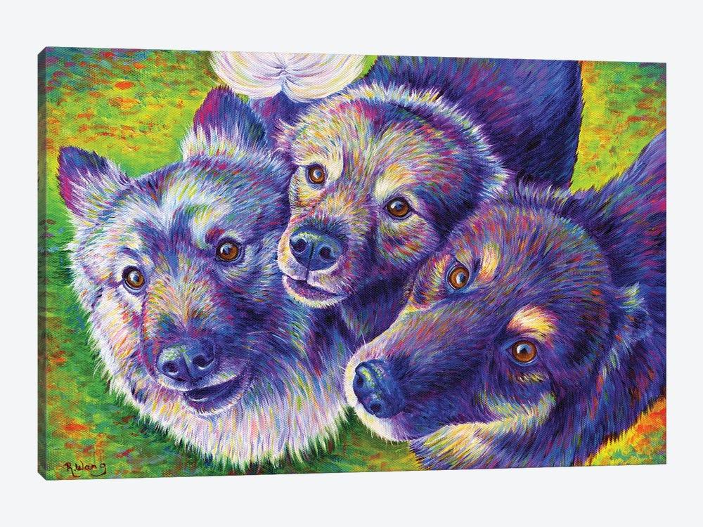 Three Amigos by Rebecca Wang 1-piece Canvas Artwork
