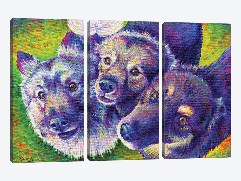 Three Amigos by Rebecca Wang 3-piece Canvas Artwork