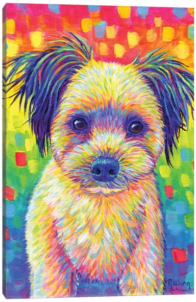 Cute Rainbow Puppy Canvas Art Print