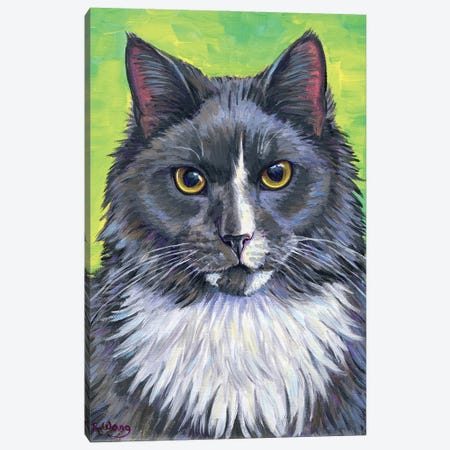 Gray And White Cat Canvas Print #RBW73} by Rebecca Wang Canvas Wall Art
