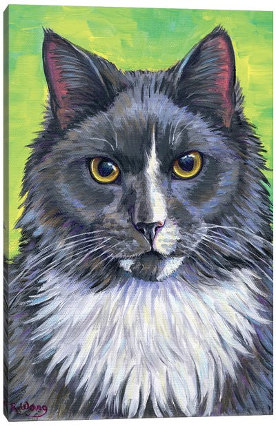 Gray And White Cat Canvas Art Print
