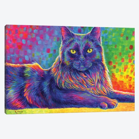 Psychedelic Rainbow Black Cat Canvas Print #RBW77} by Rebecca Wang Canvas Print