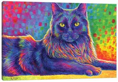 Psychedelic Rainbow Black Cat Canvas Art Print